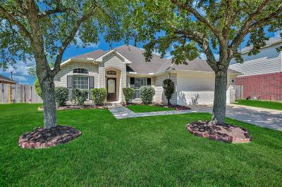 Pearland Single Family Home For Sale: 1916 Lazy Hollow Lane