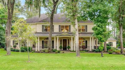 Tomball Single Family Home For Sale: 19102 Timberlake View Lane