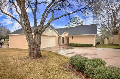 Webster Single Family Home For Sale: 2703 Shady Lane