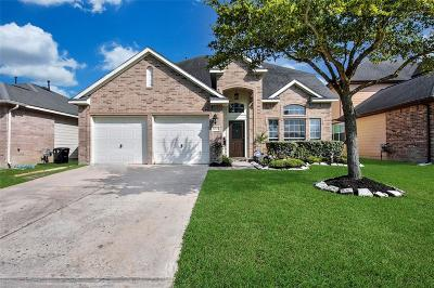 Fort Bend County Single Family Home For Sale: 21610 Bedias Creek Drive