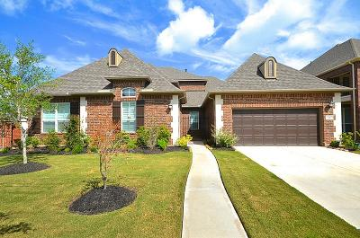 Sugar Land Single Family Home For Sale: 5122 Sterling Manor Lane