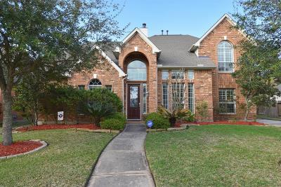 Single Family Home Option Pending: 28410 Shining Creek Lane