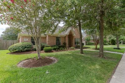 Friendswood Single Family Home For Sale: 309 Eagle Lakes Drive