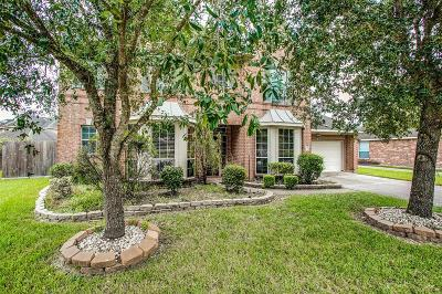 League City Single Family Home For Sale: 6122 Cameron Court