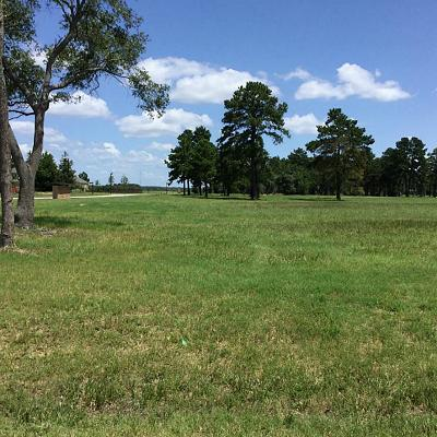 Tomball Residential Lots & Land For Sale: 13 Indigo Illusion Circle