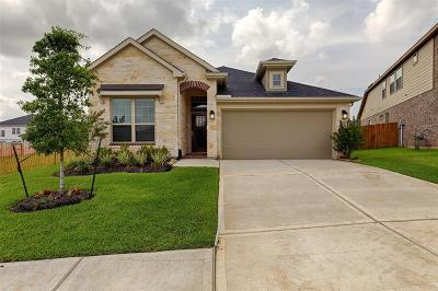 Conroe Single Family Home For Sale: 261 Catoti Cay Court