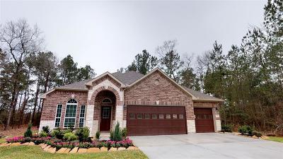 Alvin Single Family Home For Sale: 309 Cabernet Drive