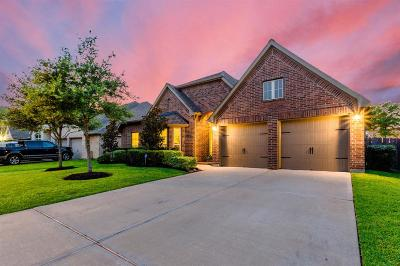 Pearland Single Family Home For Sale: 2000 Sunset Springs Drive