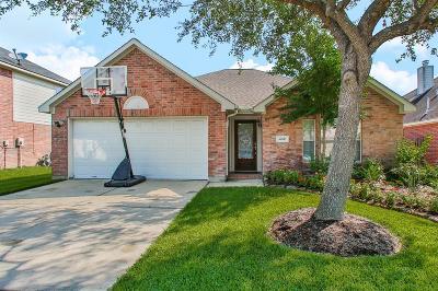 Houston Single Family Home For Sale: 4610 Wild Bluebonnet Way