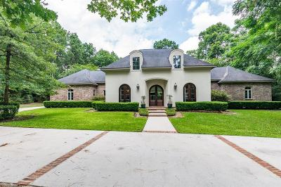 Conroe Single Family Home For Sale: 10307 Paradise Valley