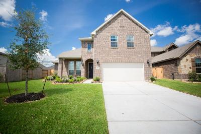 Rosharon Single Family Home For Sale: 4956 Birchwood Bluff Lane