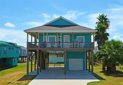 Galveston Single Family Home For Sale: 4018 Hardin Drive