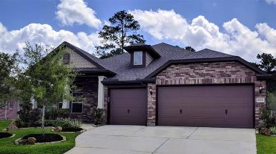 Tomball Single Family Home For Sale: 29922 Anna