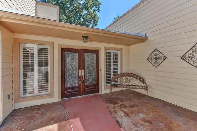 Houston Single Family Home For Sale: 14927 Beechmoor Drive