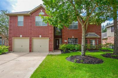 Houston Single Family Home For Sale: 16227 Zinnia Drive