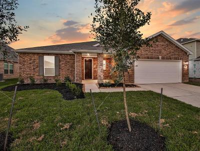 Pearland Single Family Home For Sale: 3817 Mountford Drive