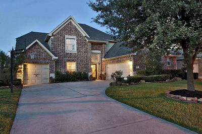 Cypress Single Family Home For Sale: 27222 Cypress Springs Lane