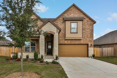 Manvel Single Family Home For Sale: 19015 Blue Valley Lane