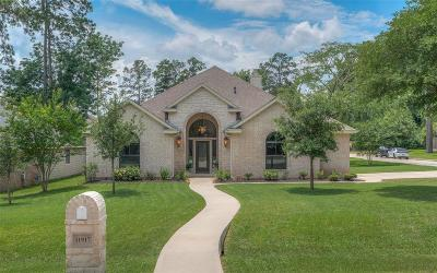 Montgomery Single Family Home For Sale: 11917 Walden Road
