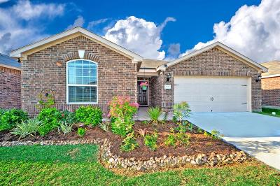 Rosenberg Single Family Home For Sale: 2227 Seabourne Trails Road