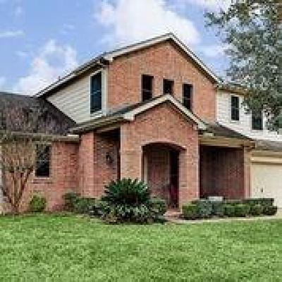 Friendswood Single Family Home For Sale: 3810 Misty Falls Lane