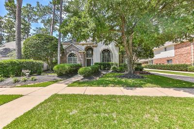 Galveston County, Harris County Single Family Home For Sale: 14527 Sandalin Drive