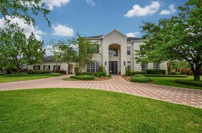 Katy Single Family Home For Sale: 2703 Silverhorn Drive