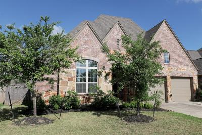 Manvel Single Family Home For Sale: 3143 Currant Drive