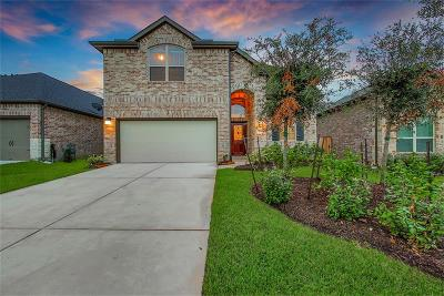 Montgomery Single Family Home For Sale: 111 Sunrise Haven Drive
