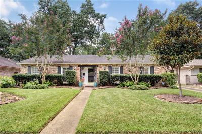 Houston Single Family Home For Sale: 1131 Chamboard Lane