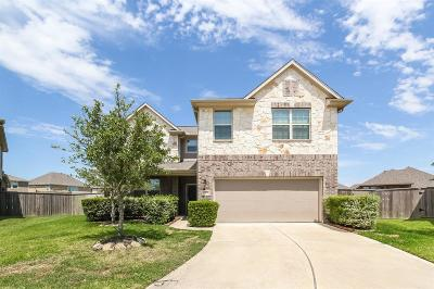 Pearland Single Family Home For Sale: 1901 Willow Chase Lane