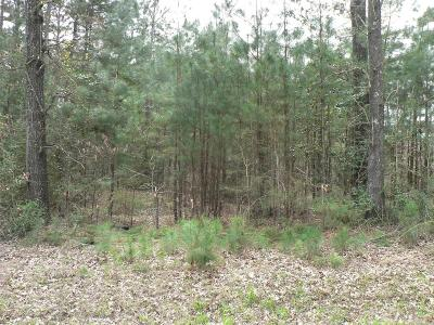 Willis Residential Lots & Land For Sale: 13259 Tom Sawyer