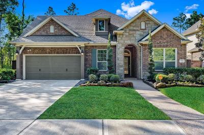 Humble Single Family Home For Sale: 13706 Overton Woods Drive