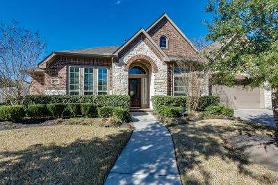 Houston Single Family Home For Sale: 14203 Pearl Shadow Lane