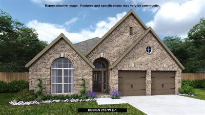 Pearland Single Family Home For Sale: 3104 Primrose Canyon Lane