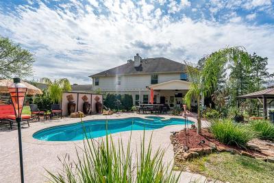 Montgomery Single Family Home For Sale: 9047 Grand Lake Estates Drive