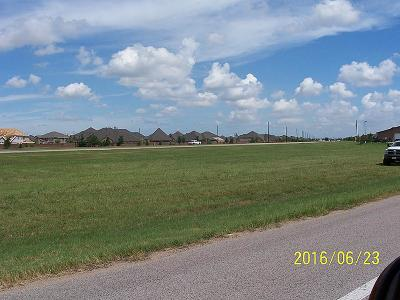 Residential Lots & Land Pending: 12011 Clodine Road