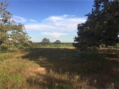 Flatonia TX Farm & Ranch For Sale: $261,000