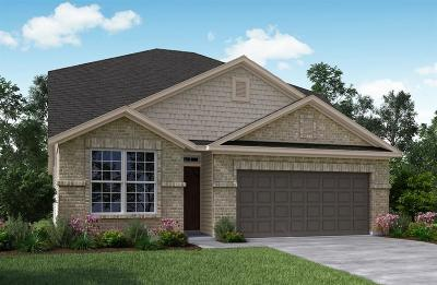 Single Family Home For Sale: 4406 Lone Alcove Drive