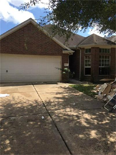 Katy Single Family Home For Sale: 6311 Clear Canyon Drive