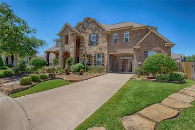 Friendswood Single Family Home For Sale: 2212 Maple Cliff Lane