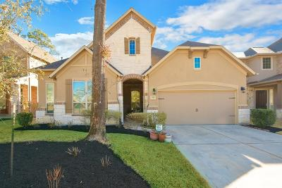 The Woodlands Single Family Home For Sale: 74 Hamlin Lake Drive
