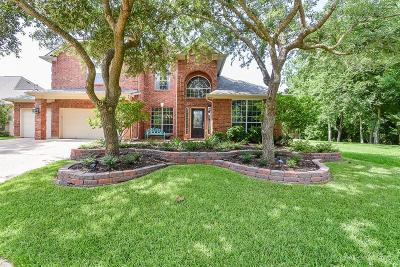 Sienna Plantation Single Family Home For Sale: 10335 Feldman Falls