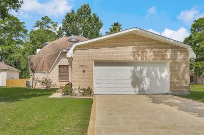 Houston Single Family Home For Sale: 19803 Belle Way Drive