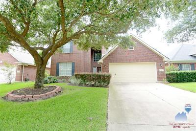 Tomball Single Family Home For Sale: 17507 Forest Vine Court