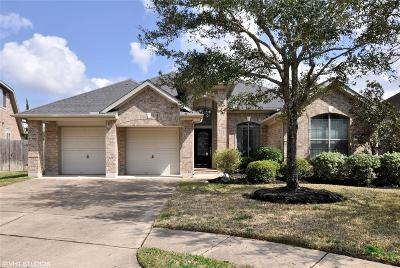 Katy Single Family Home For Sale: 9806 Eagle Peak Court