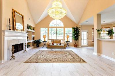 Sugar Land Single Family Home For Sale: 1515 Meadowsweet Drive