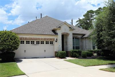 Houston Single Family Home For Sale: 16619 Great Salt Drive