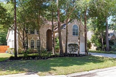 The Woodlands Single Family Home For Sale: 11 Vista Mill Place