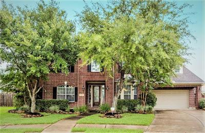 Friendswood Single Family Home For Sale: 208 Ranchwood Lane